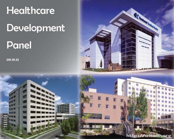 Healthcare Development Panel
